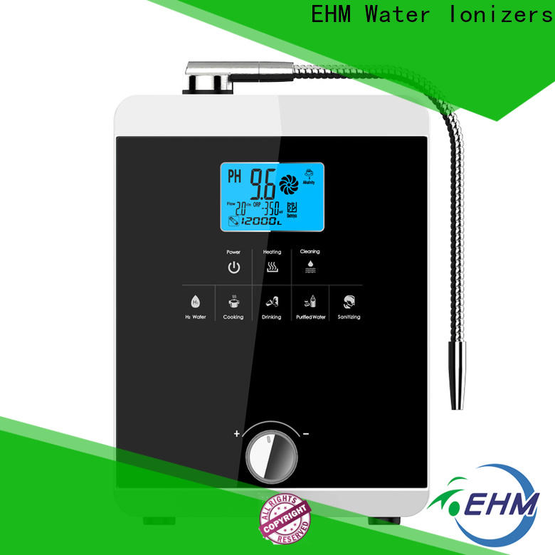 low-cost water ionizer reviews drinking company for family